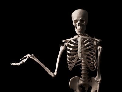 Skeleton Tales for Our Times What Skeleton Taught Me about Death and Love, Heaven and Hell